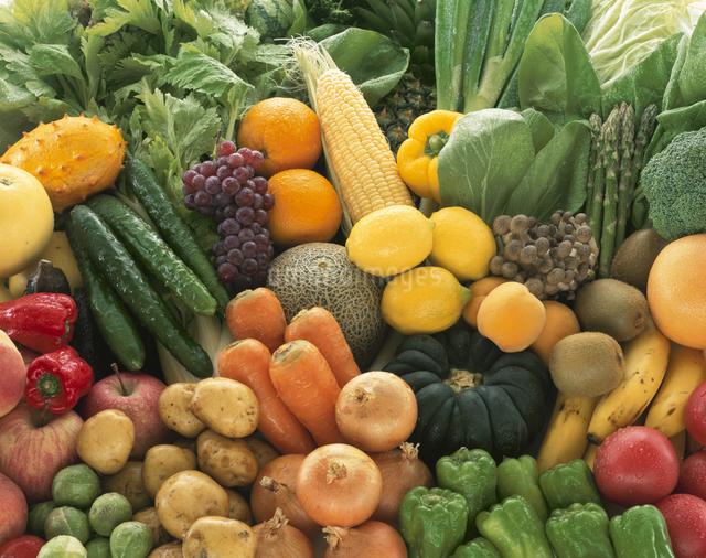 野菜と果物の集合の写真素材 [FYI01409437]
