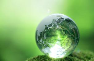 ガラスの地球と新緑の写真素材 [FYI01410478]