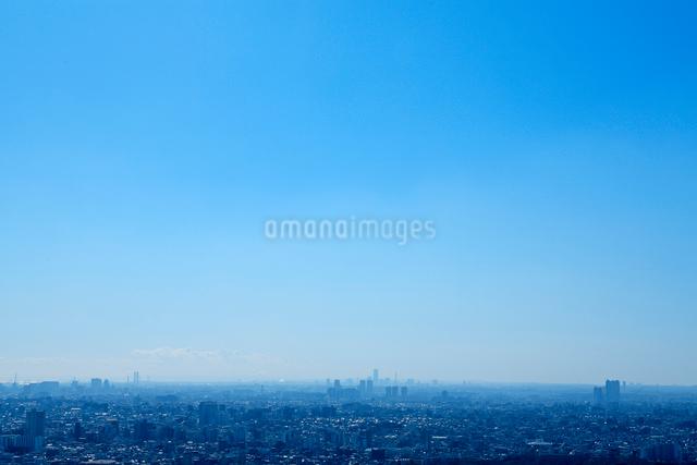 横浜方面のビル群の写真素材 [FYI01410814]