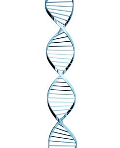 DNAの写真素材 [FYI01412626]