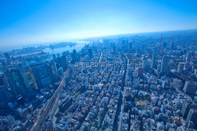 東京俯瞰 の写真素材 [FYI01412707]