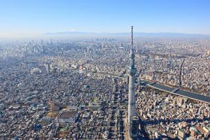 スカイツリーと新宿ビル群と富士山の写真素材 [FYI01412870]