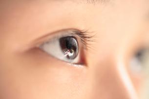 子供の眼の写真素材 [FYI01412948]