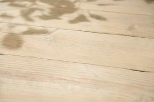 白い板に木漏れ日の写真素材 [FYI01413661]