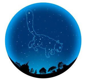 夜空の球体に小熊座の写真素材 [FYI01413664]