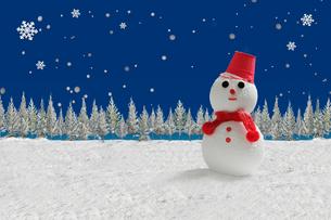 雪だるまと沢山の樹氷の写真素材 [FYI01413785]