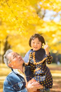 紅葉の銀杏並木のおじいちゃんと孫娘の写真素材 [FYI01413878]
