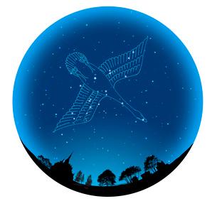 夜空の球体に白鳥座の写真素材 [FYI01413938]