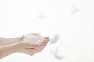 羽を受け止めるイメージの写真素材 [FYI01414072]