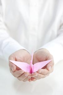 折鶴を抱えるイメージの写真素材 [FYI01414398]