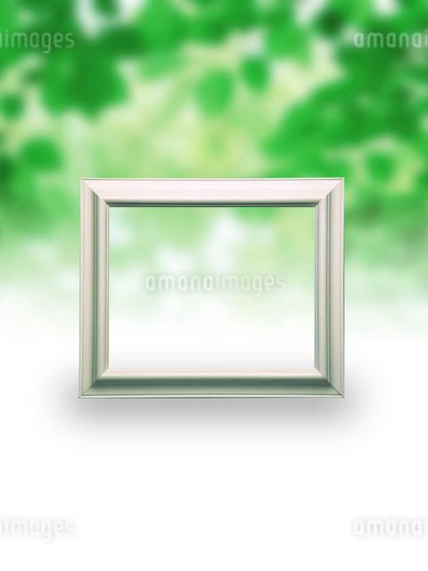 新緑の背景と白枠のフレームのイラスト素材 [FYI01415027]