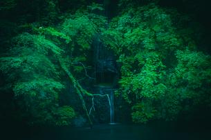 川に注ぎ込む岩清水の写真素材 [FYI01416890]