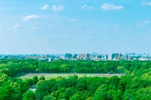 晴天の光が丘公園緑地の写真素材 [FYI01417326]