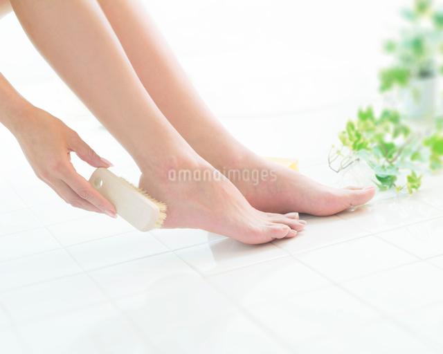フットケアをする日本人女性の足元の写真素材 [FYI01417615]