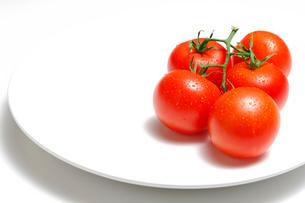 トマトと皿の写真素材 [FYI01418011]