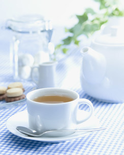 紅茶の写真素材 [FYI01418084]