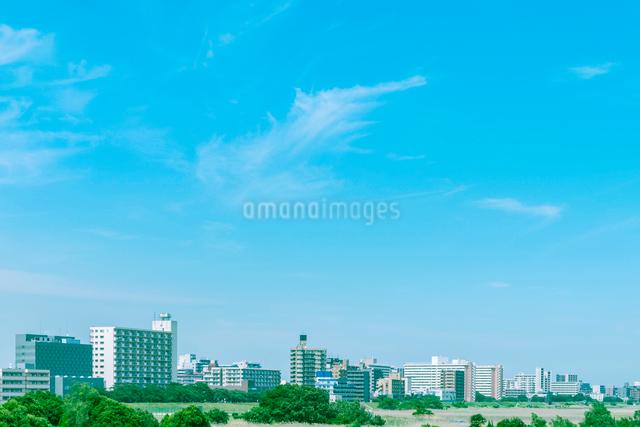 多摩川沿いに建つビル群の写真素材 [FYI01418094]