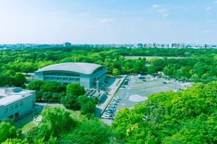 晴天の光が丘公園緑地の写真素材 [FYI01418263]