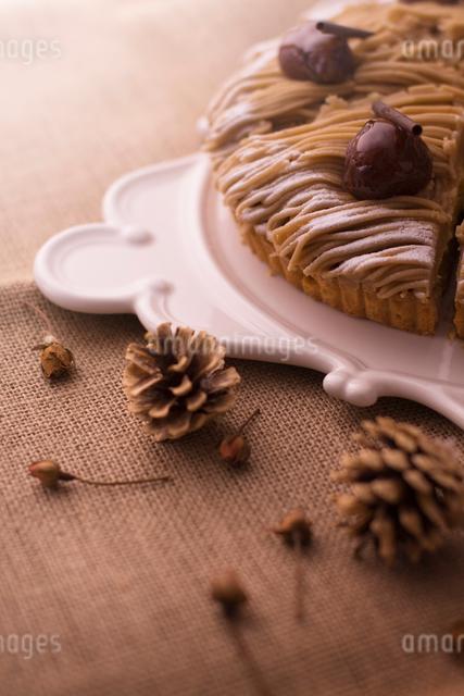 モンブランタルトと木の実の写真素材 [FYI01418305]