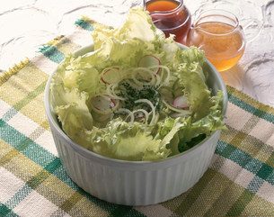グリーンサラダの写真素材 [FYI01418500]