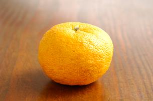 柚の写真素材 [FYI01418686]