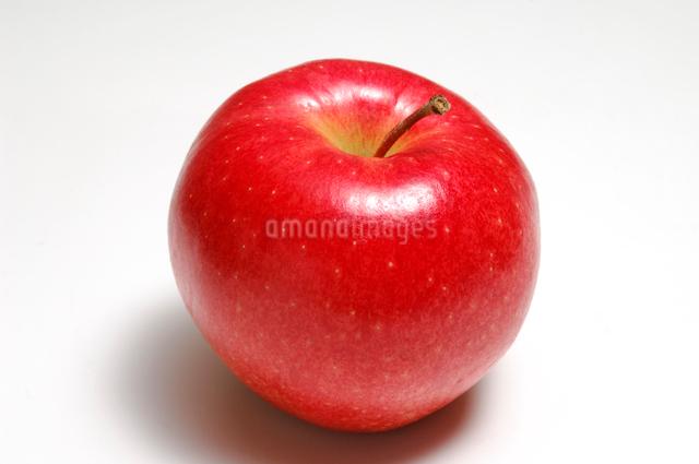 りんごの写真素材 [FYI01418730]