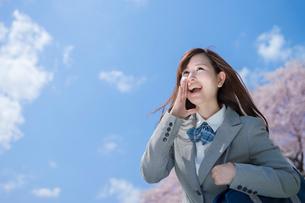 桜と青空をバックに叫ぶ女子高生の写真素材 [FYI01418759]