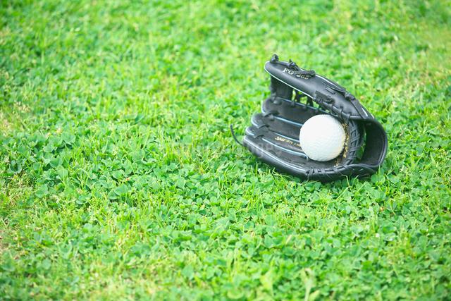 草の上に置かれたグローブとボールの写真素材 [FYI01419244]