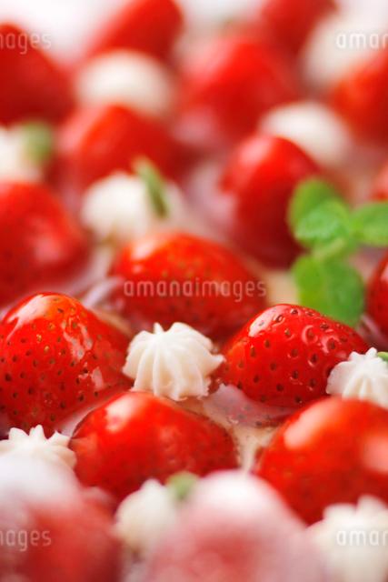 苺のケーキのアップの写真素材 [FYI01419250]