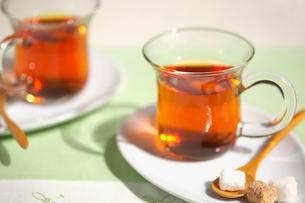 二杯の紅茶とシュガーの写真素材 [FYI01419300]