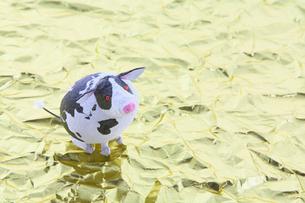 金地と地球柄の牛の写真素材 [FYI01419400]