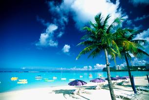 グアムのタモンビーチの写真素材 [FYI01419733]
