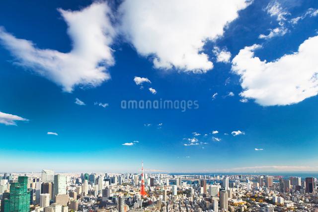 東京タワーと都心の街並の写真素材 [FYI01420264]