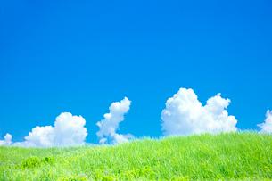 緑の土手と入道雲の写真素材 [FYI01420347]