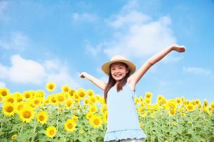 ひまわり畑で両手を挙げる女の子の写真素材 [FYI01420561]