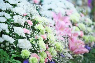 葬儀の供花の写真素材 [FYI01420580]