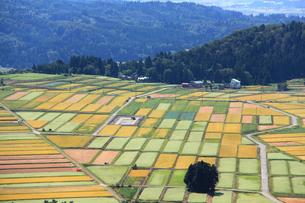 田園風景の写真素材 [FYI01421407]
