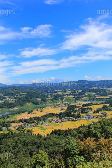 山本山から望む棚田風景の写真素材 [FYI01421437]