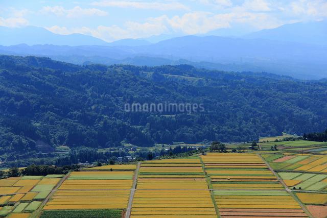 田園風景の写真素材 [FYI01421480]