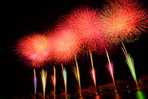 新潟まつり花火大会の写真素材 [FYI01421802]