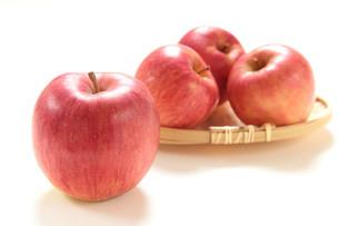 りんごの写真素材 [FYI01422499]
