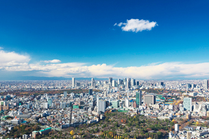 東京タワーと都心の街並の写真素材 [FYI01422543]