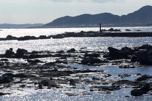 千葉県鴨川海岸の岩と松の写真素材 [FYI01422790]