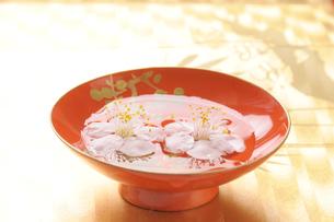 漆塗りの杯に浮かぶ白梅の写真素材 [FYI01422827]