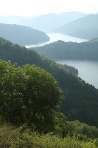 朝の田子倉湖の写真素材 [FYI01423279]
