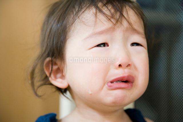 泣く女の子の写真素材 [FYI01423364]