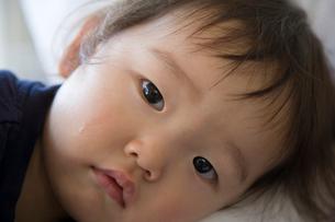日本人の女の子の写真素材 [FYI01423630]