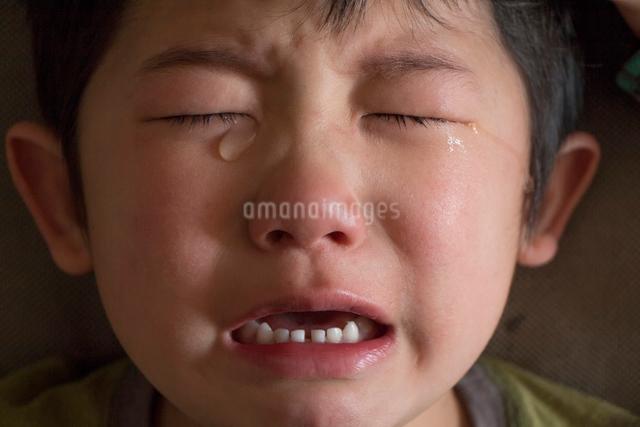 泣く男の子の写真素材 [FYI01423801]