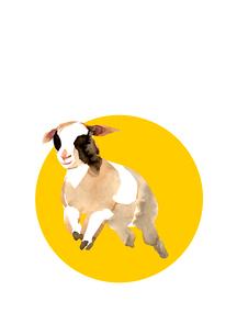 黄色円形から走り出す羊のイラスト素材 [FYI01424277]