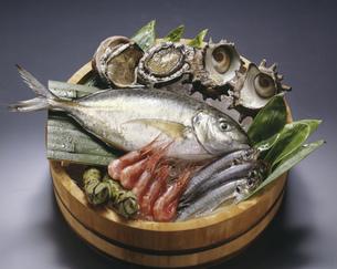 魚と貝の桶盛りの写真素材 [FYI01424488]
